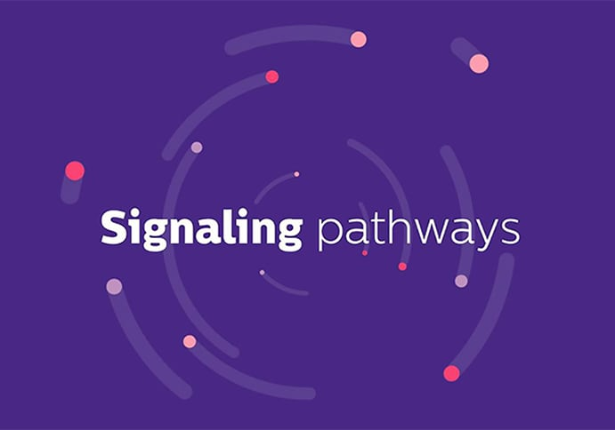Philips OncoSignal: Signaling-driven medicine